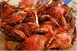 Rotary's Crab Feast tickets now on sale