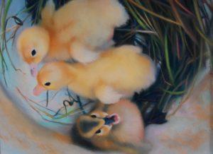 Evie Baskin, Ducklings, Pastel, West Annapolis Art Works