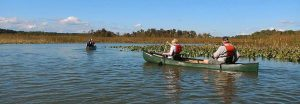 jug_bay_canoes
