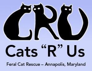 cats r us