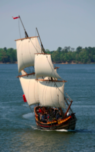 Dove Under Sail