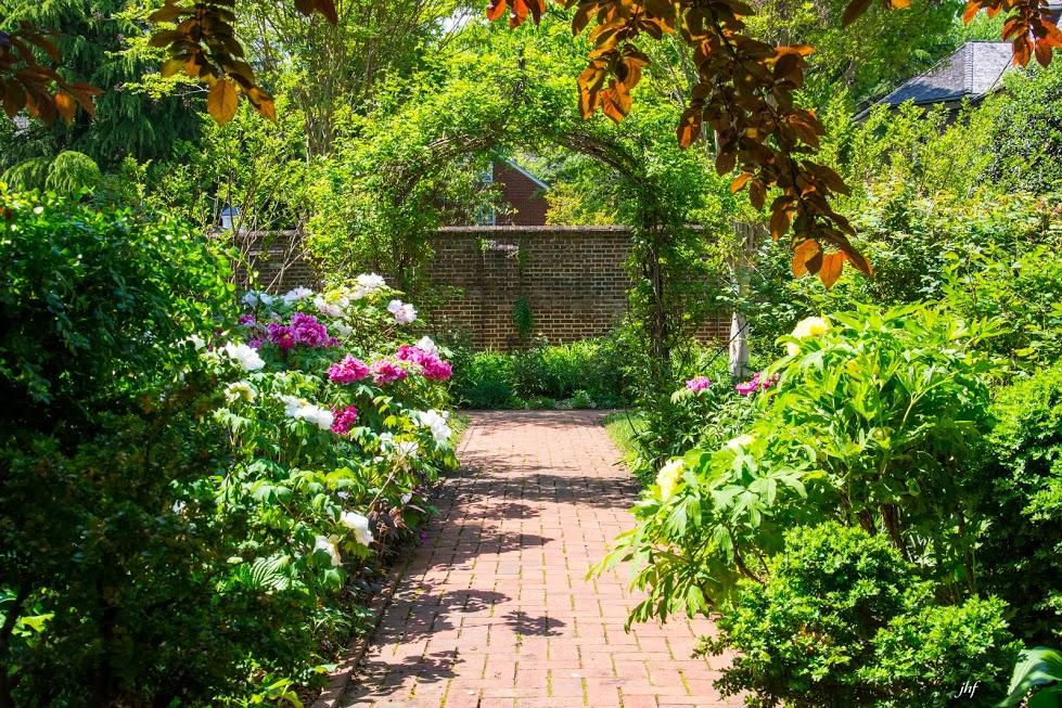 Historic Hammond-Harwood House Secret Garden Tour : Eye On Annapolis