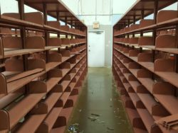 BIG Shelves 1