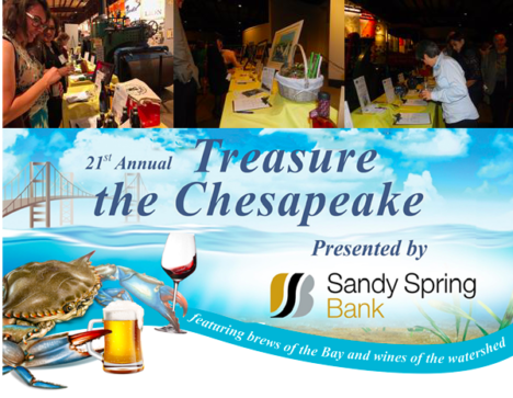 Chesapeake Bay Trust to host 21th Annual Treasure the Chesapeake this Thursday, few tickets remain