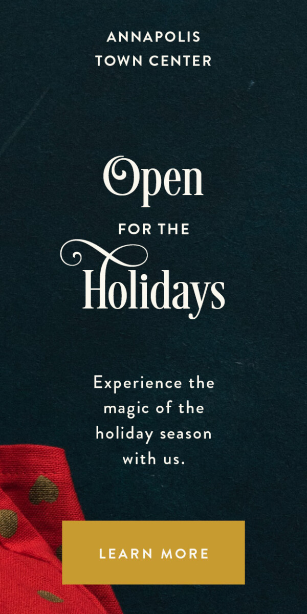 ATC-Holiday20-DigitalAd-OPEN_300x600
